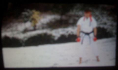 Live action Street Fighter project on Paul Gale Network